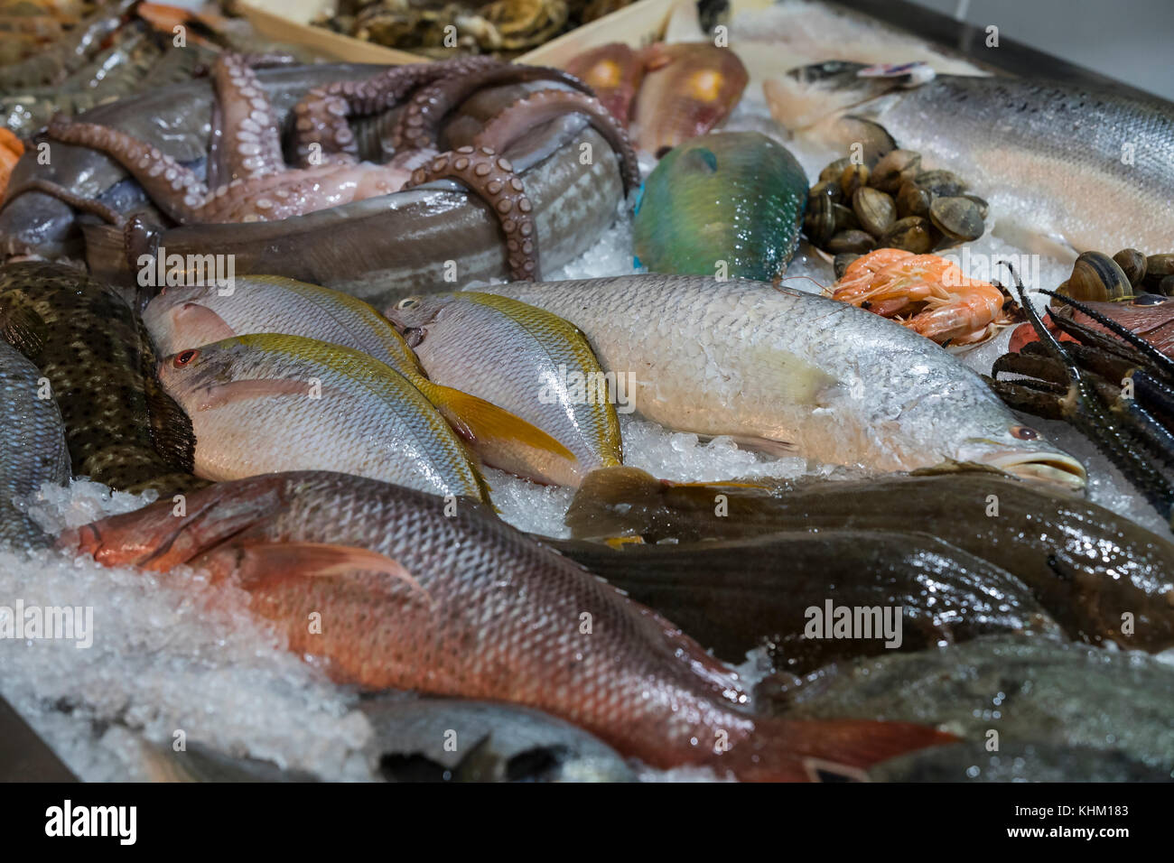 fond de poisson fruits de mer palourdes crabes banque d 39 images photo stock 165782515 alamy. Black Bedroom Furniture Sets. Home Design Ideas