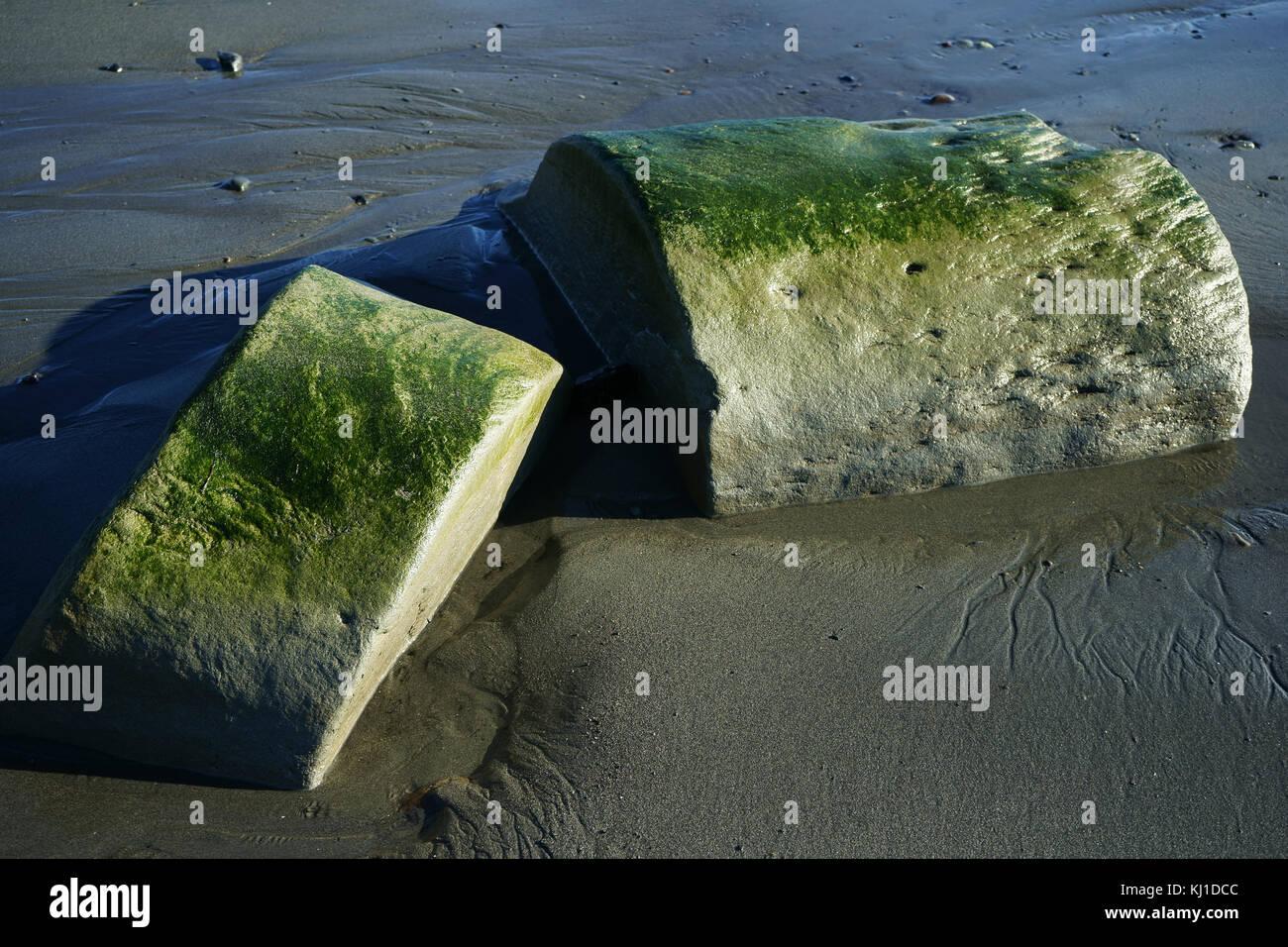 Rocher rond allongé divisé sur la plage de sable à marée de Cook Inlet, péninsule de Kenai, Alaska Banque D'Images
