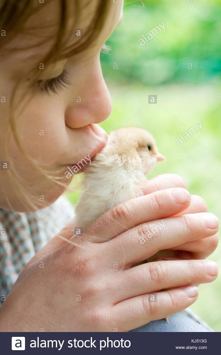 Little girl kissing chicken Photo Stock