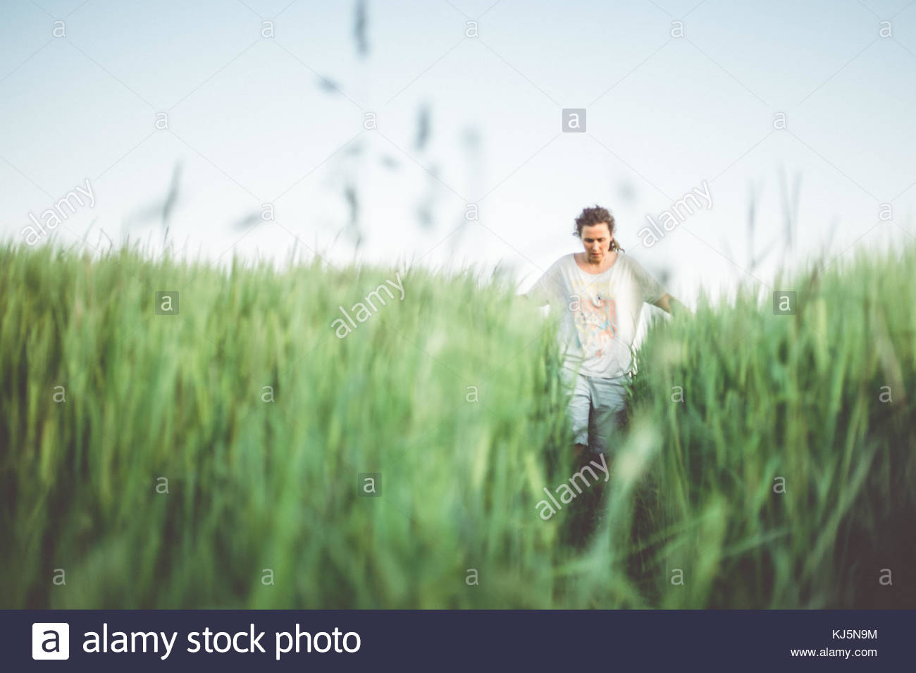 Homme marchant à travers champ vert Banque D'Images