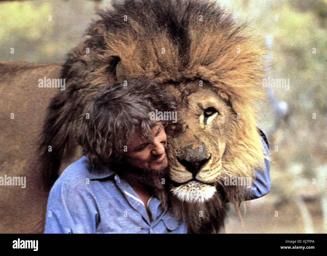 Roar - die löwen sind los aka. ronfle, USA 1982 regie: noel Marshall Marshall acteurs: noel Photo Stock