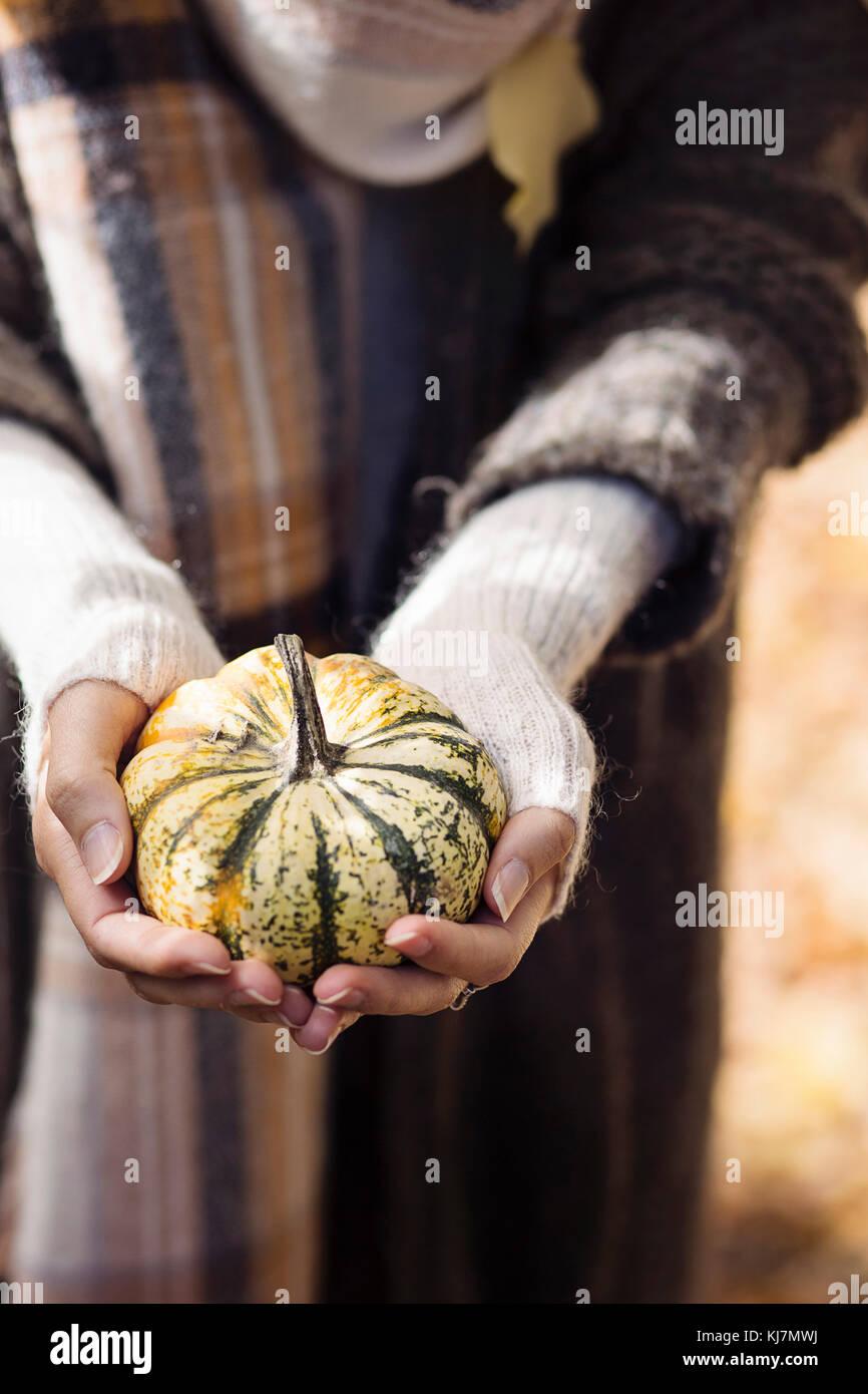 Mains de femme tenant une petite citrouille Photo Stock