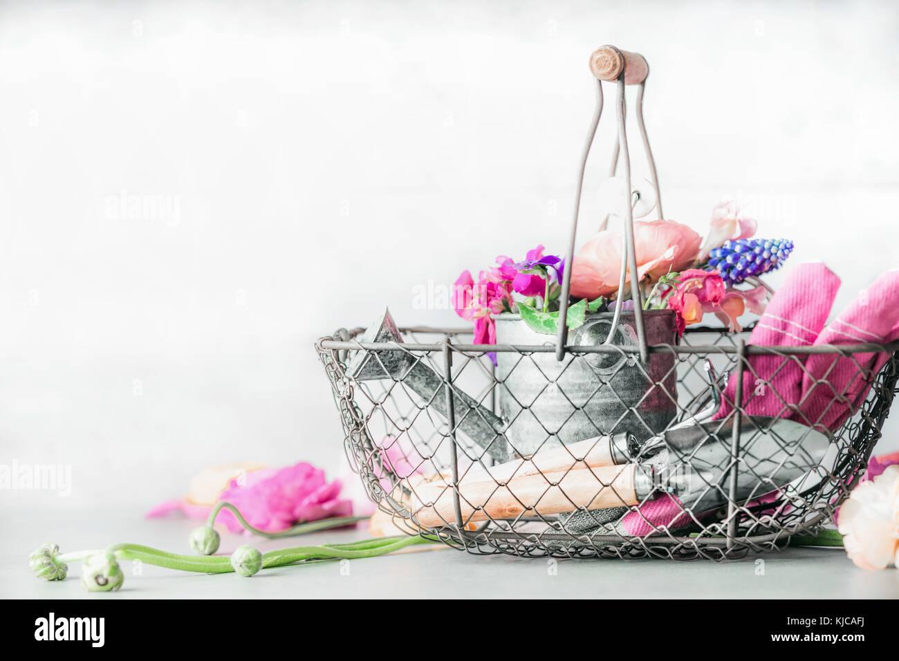Joli cadre de jardinage avec arrosoir , panier, outils de jardinage ...