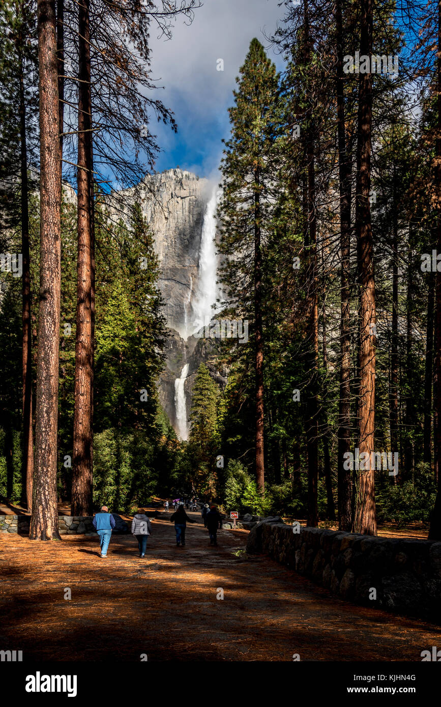 Paysage de Yosemite National Park, Californie Banque D'Images