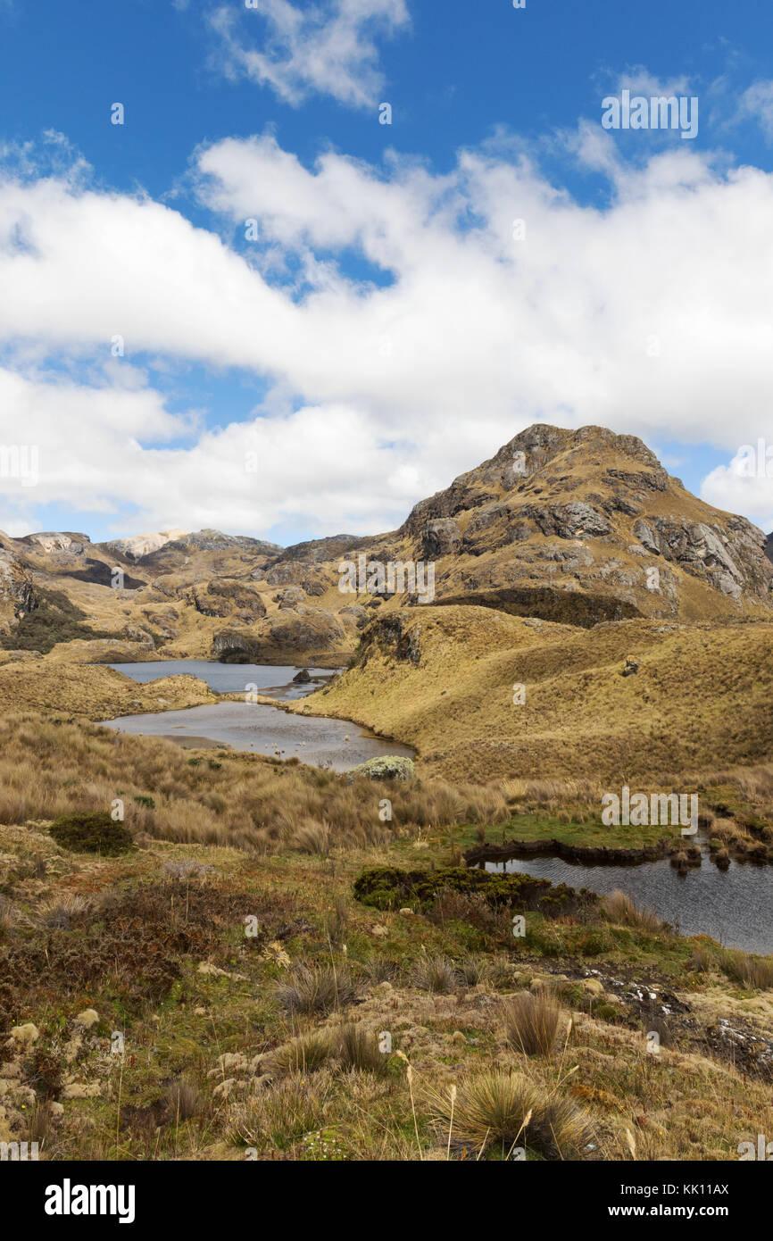 L'Equateur Paysage - Cajas National Park ( Parque Nacional Cajas ), Southern Highlands, Equateur, Amérique Photo Stock