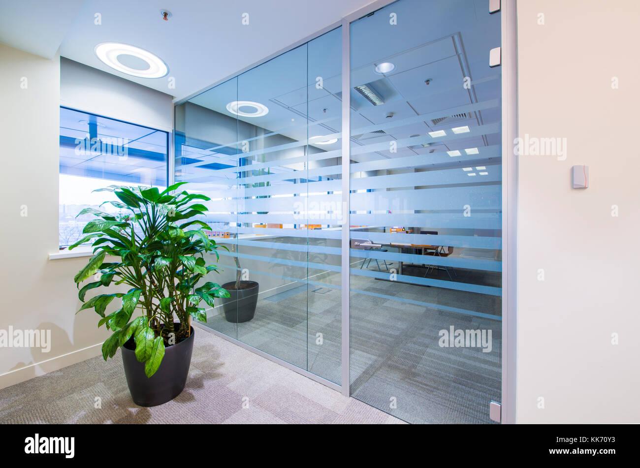 Porte en verre et plante verte dans le couloir au bureau moderne