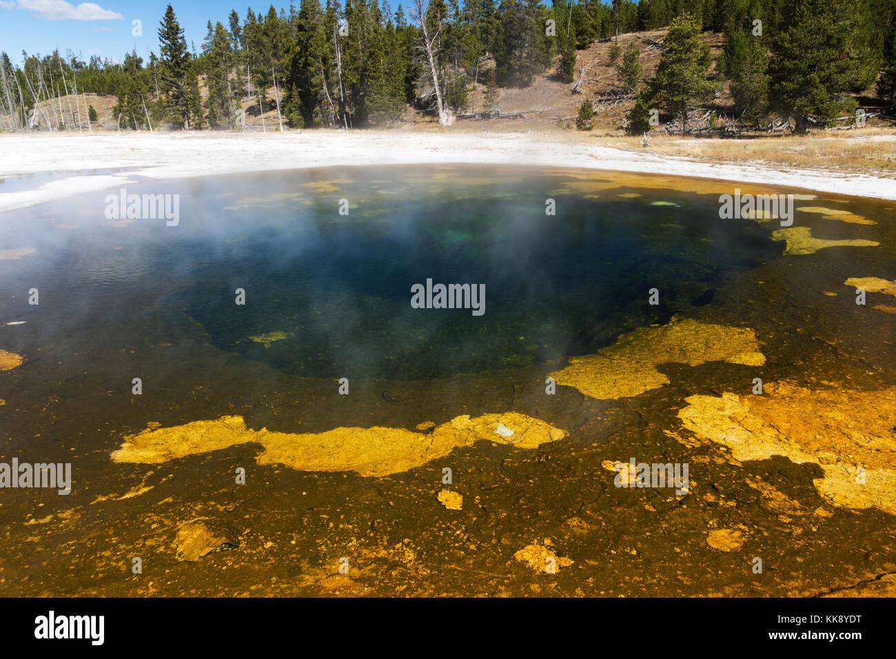 La beauté extérieure caractéristique thermique dans le coin supérieur geyser Basin, parc national Photo Stock