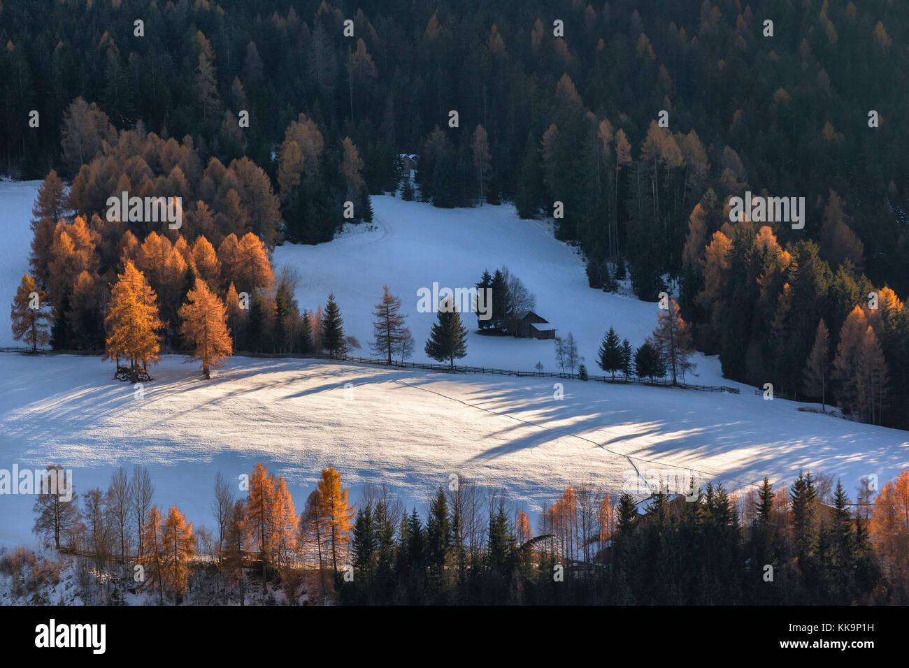 Maison solitaire dans la forêt en son surround f St. Maddalena village, Dolomites, Italie Photo Stock