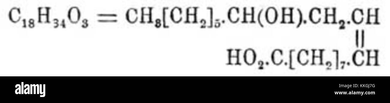 Brockhaus et Efron Encyclopedic Dictionary b52 829-3 Banque D'Images