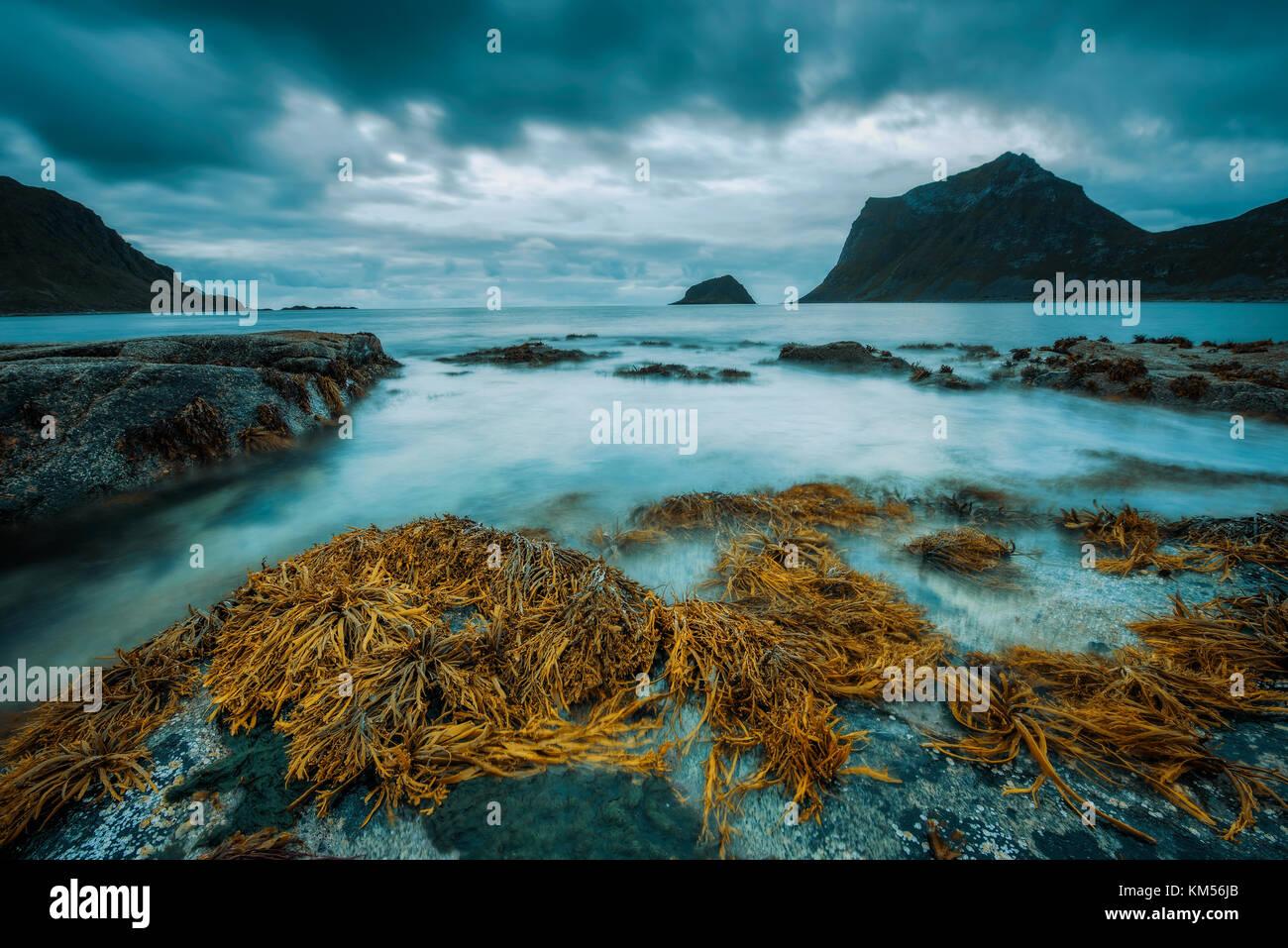 Haukland beach sur îles Lofoten en Norvège Photo Stock