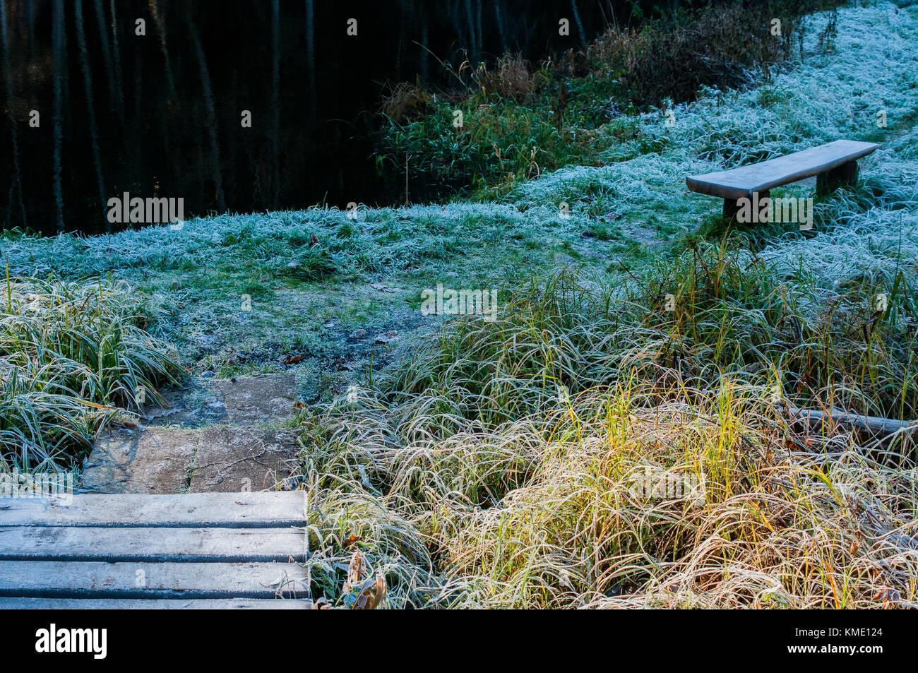 Chemin de la rivière. Banc à proximité de la rive. Lumière chaude et fraîche ombre. Scène Photo Stock