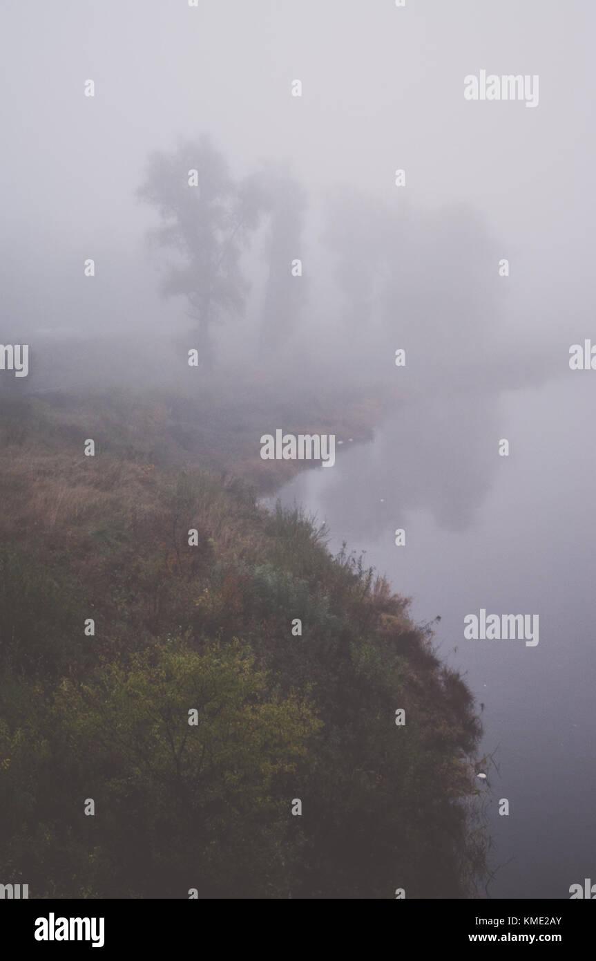 Matin brumeux du paysage. Scène de rivière. Photo Stock