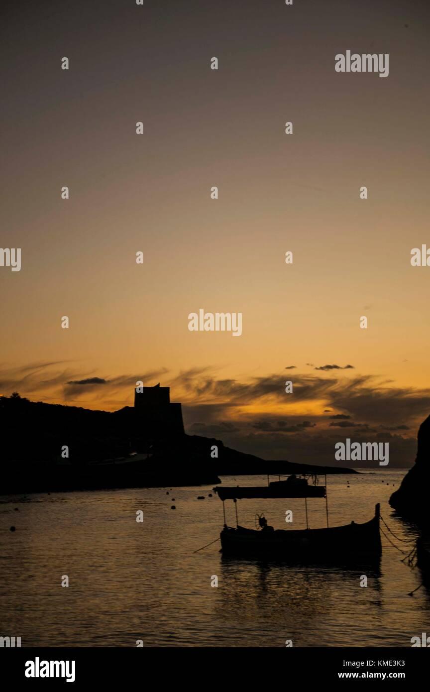 Tzu lu maltais de sortir le soir pour la pêche Photo Stock