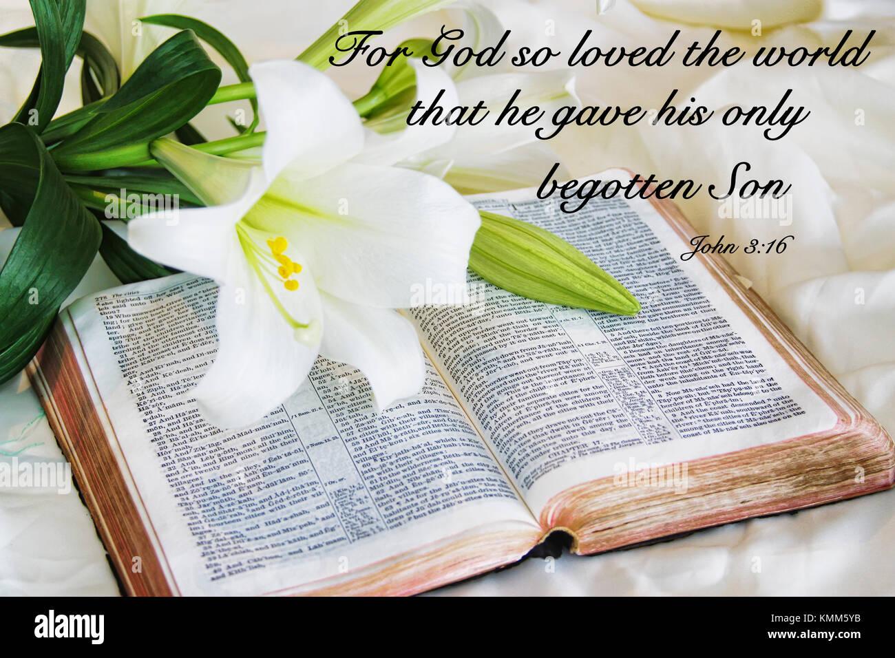 Populaire préféré Citation de motivation chrétienne disant Car Dieu a tant aimé le &UZ_45