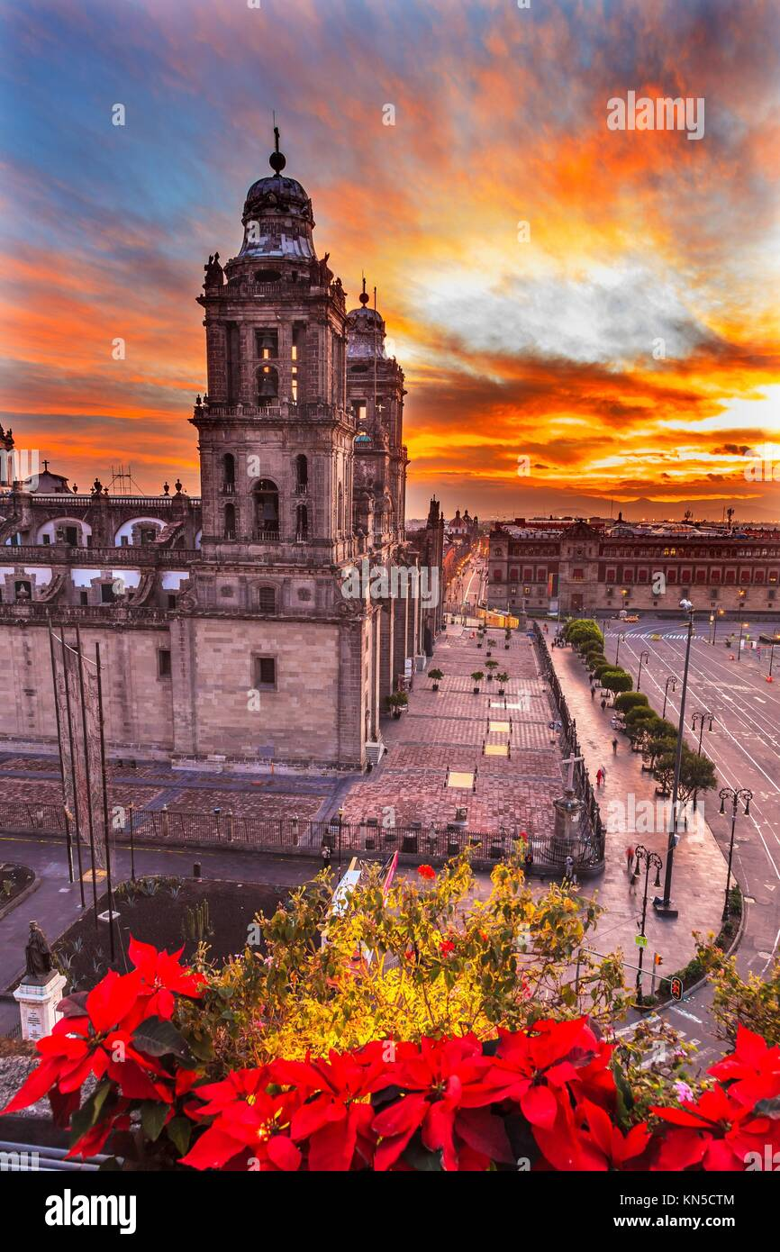 Cathédrale métropolitaine Noël dans Zocalo, Centre de Mexico Mexique le lever du soleil. Photo Stock