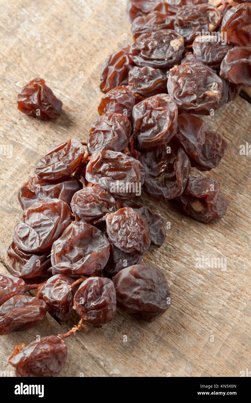 Brindille de raisins Muscat sec close up. Banque D'Images