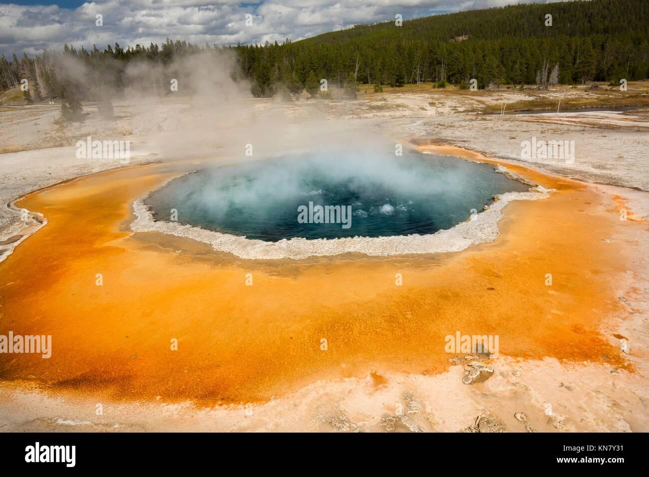 Morning Glory Pool, une source d'eau chaude dans la région de geyser Basin de Parc National de Yellowstone, Wyoming, Banque D'Images