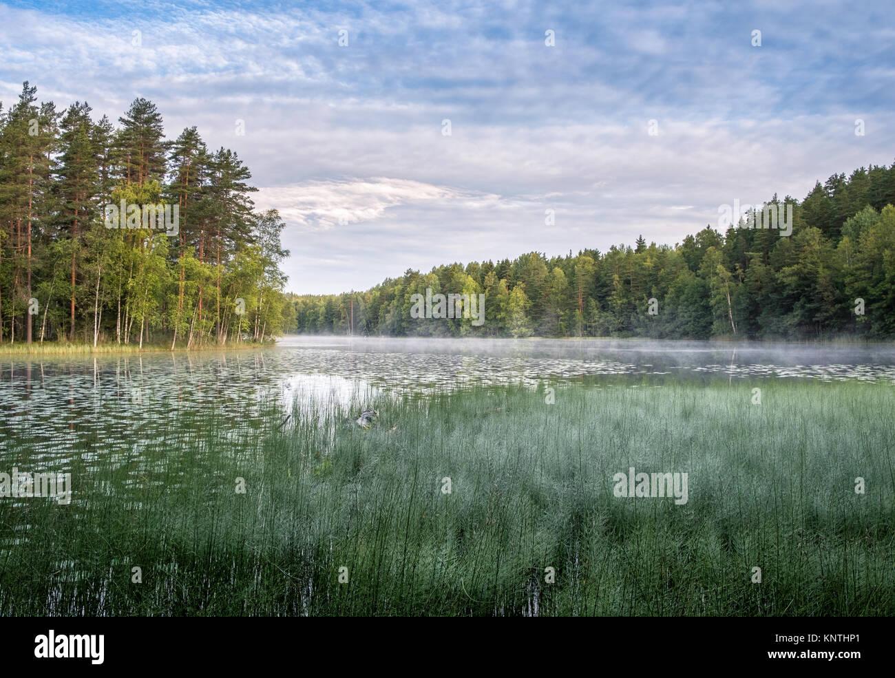 Matin calme avec vue panoramique sur le lac de l'humeur à l'automne dans le parc national de Nuuksio, Finlande Banque D'Images