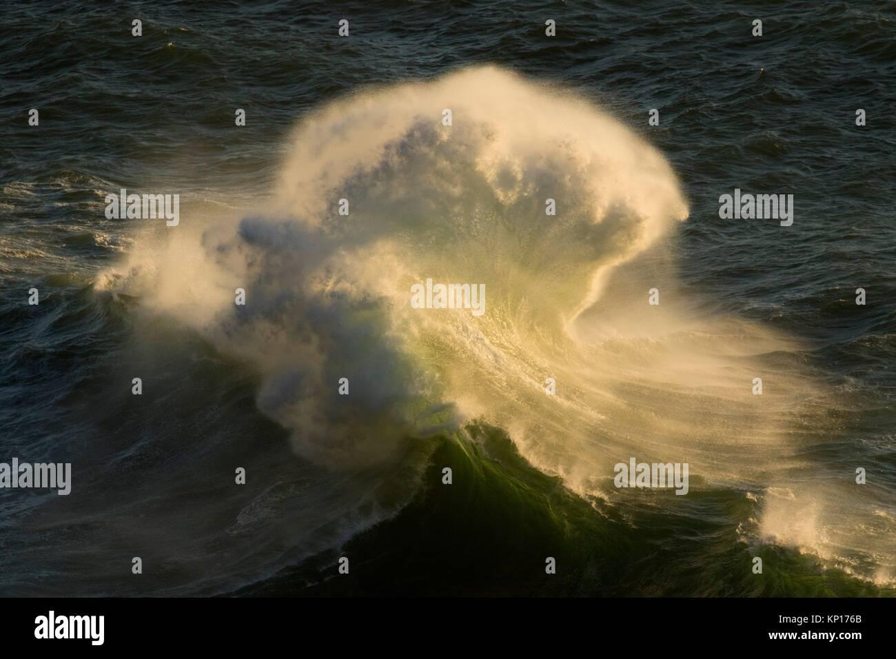 Vague de plage, parc d'État Heceta Head, de l'Oregon. Photo Stock