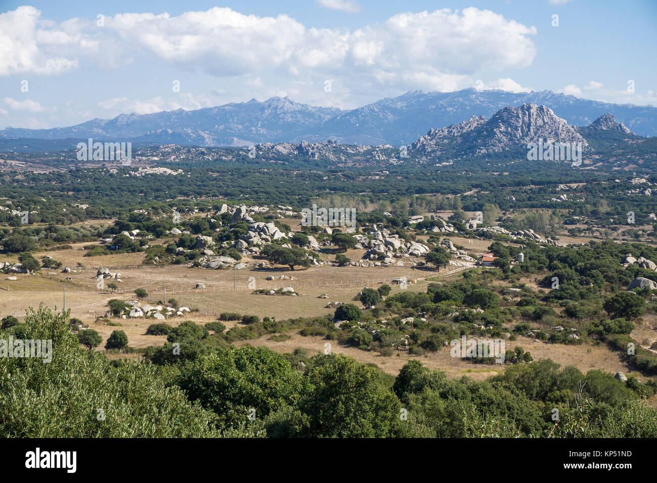 Valle della Luna, vallée de la lune, paysage de granit à Aggius, Olbia-Tempio, Gallura, Sardaigne, Italie, Photo Stock