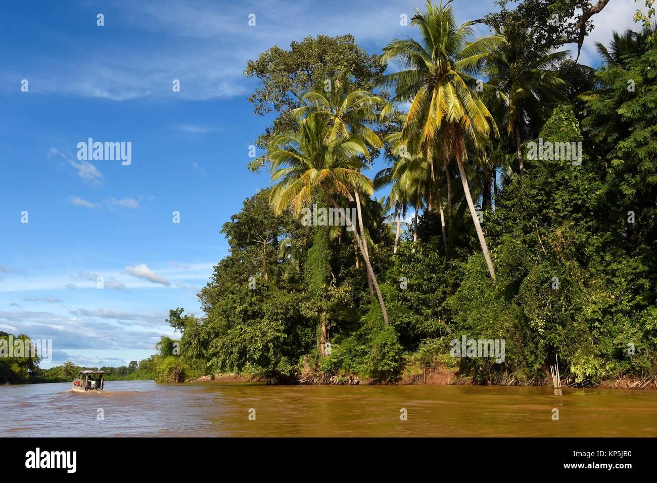 L'île de Det fait dans la région des Mille-Îles 4,Si Phan Don,du Mékong, au sud du Laos, Asie du sud-est. Banque D'Images