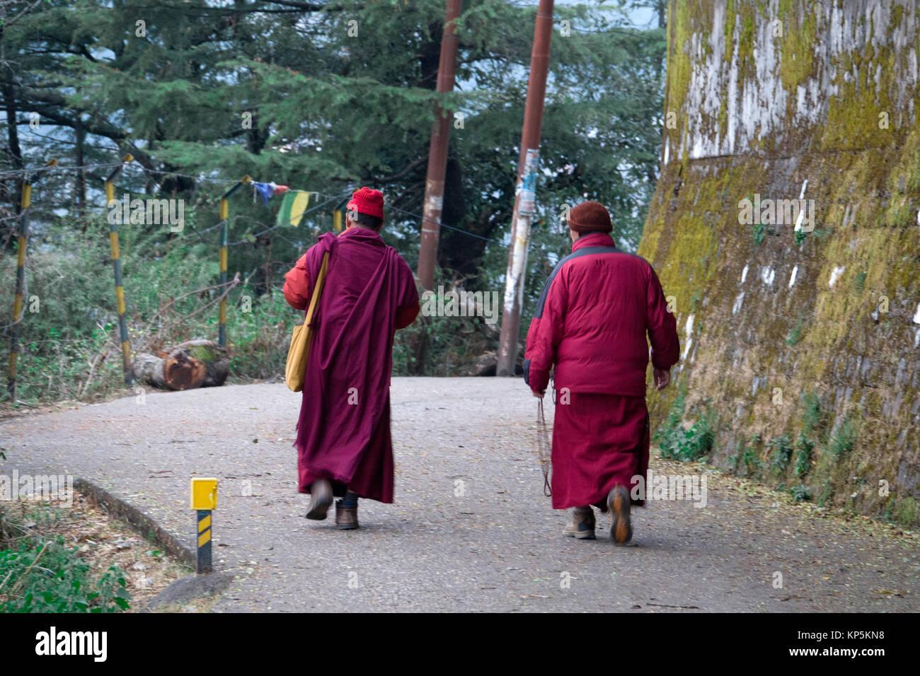 Les moines bouddhistes, marcher le long de route à Mcleod Ganj, Himachal Pradesh, Inde Photo Stock