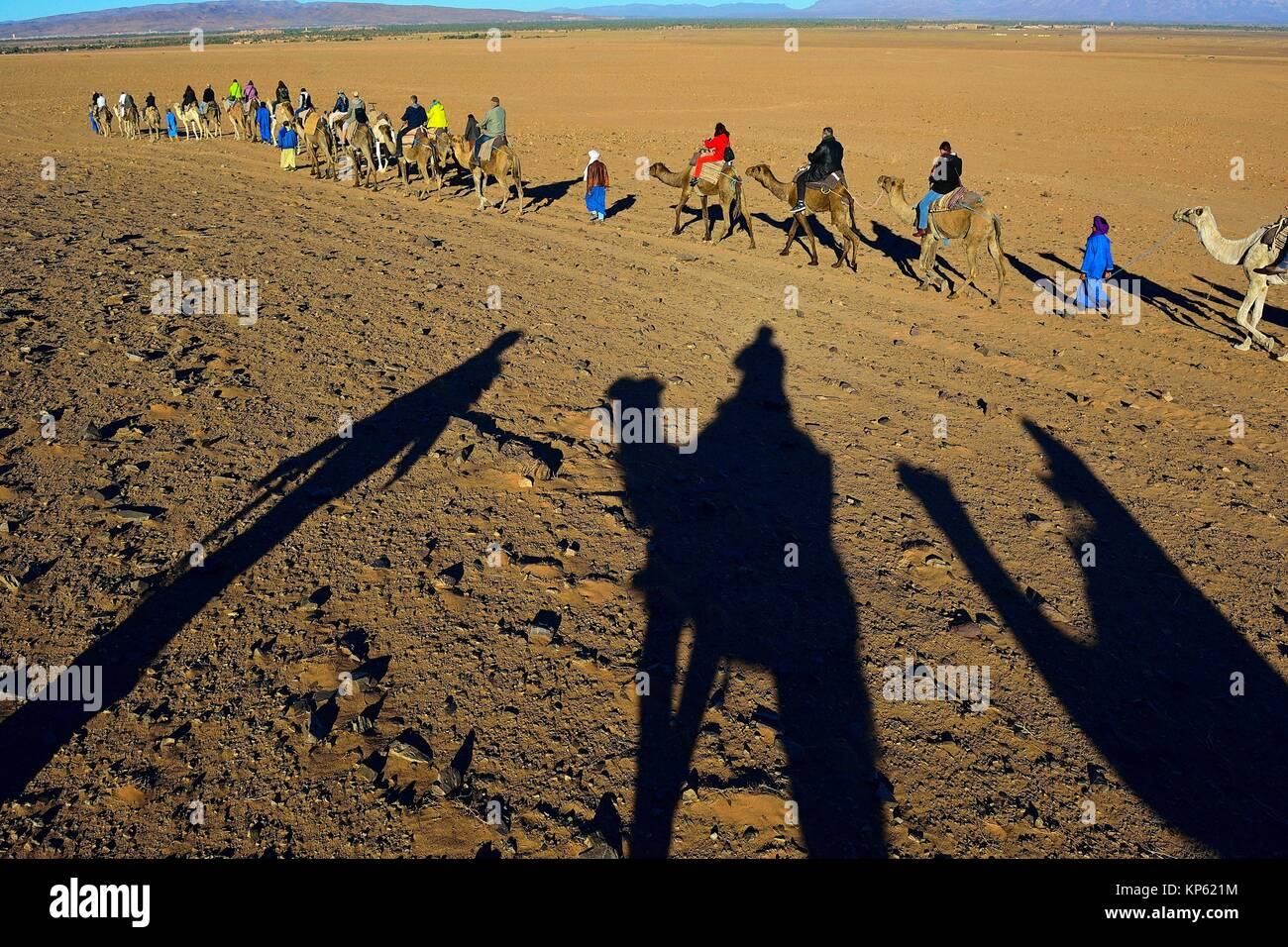 Tourisme dans le désert près de Zagora, au sud du Maroc. Photo Stock