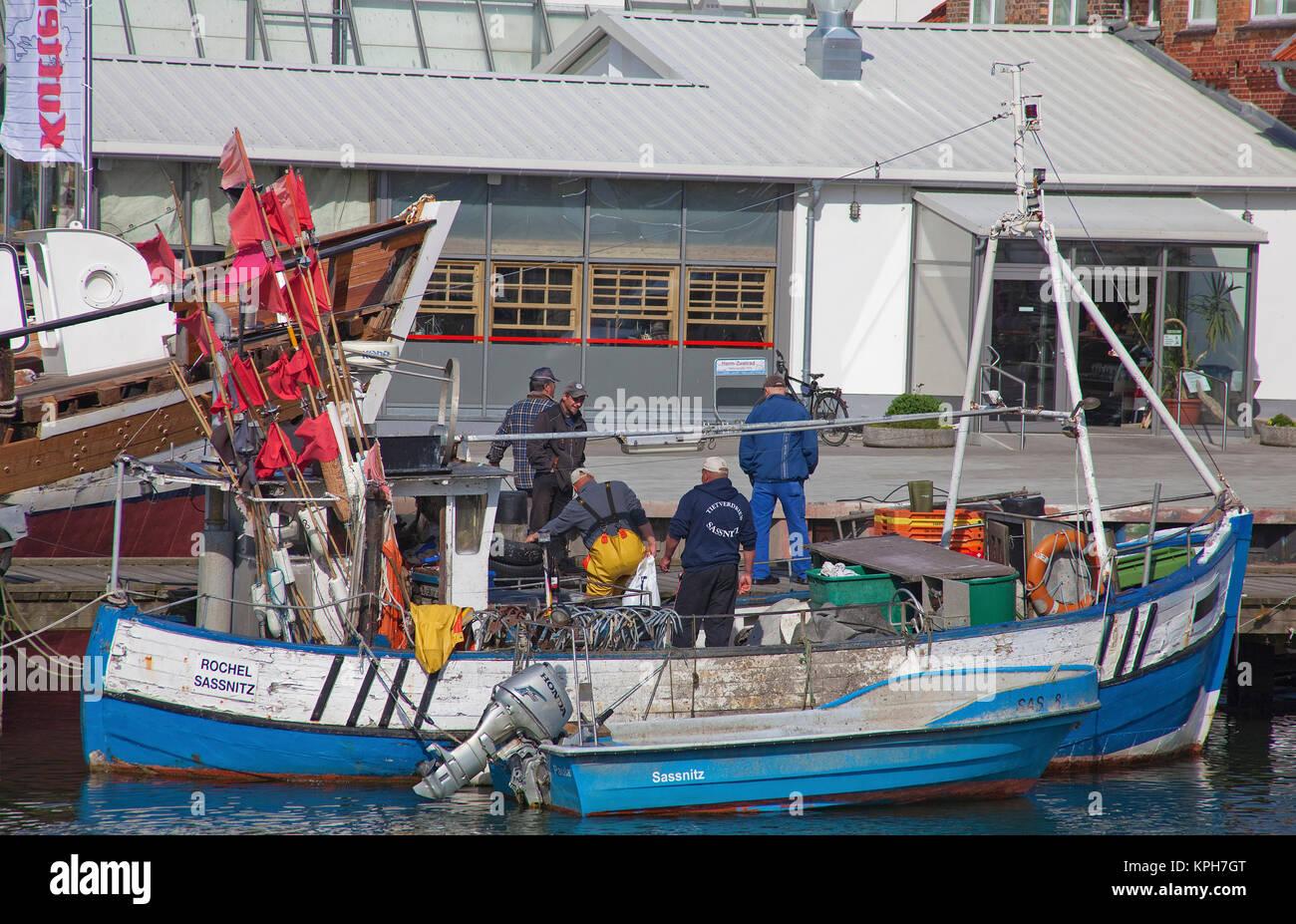 Les pêcheurs au port de Sassnitz, Ruegen island, Mecklembourg-Poméranie-Occidentale, de la mer Baltique, l'Allemagne, de l'Europe Banque D'Images