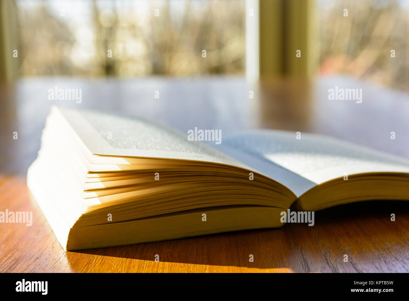 Vue rapprochée d'un livre de poche ouverte portant sur une table en bois et éclairé par un rayon Photo Stock