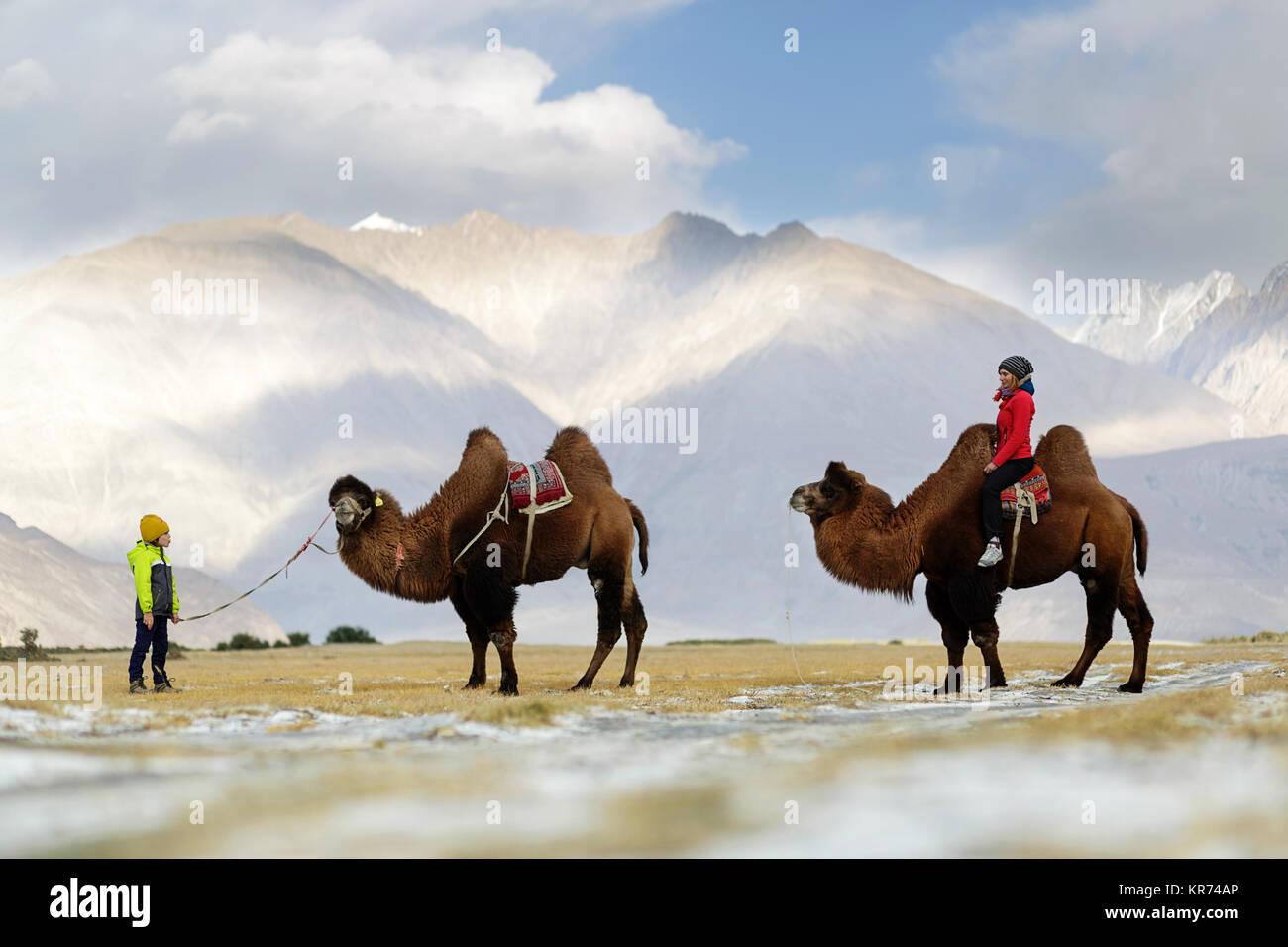 Mother and son riding double bosse de chameau et de traverser le désert dans la vallée de Nubra, Ladakh, le Jammu Banque D'Images