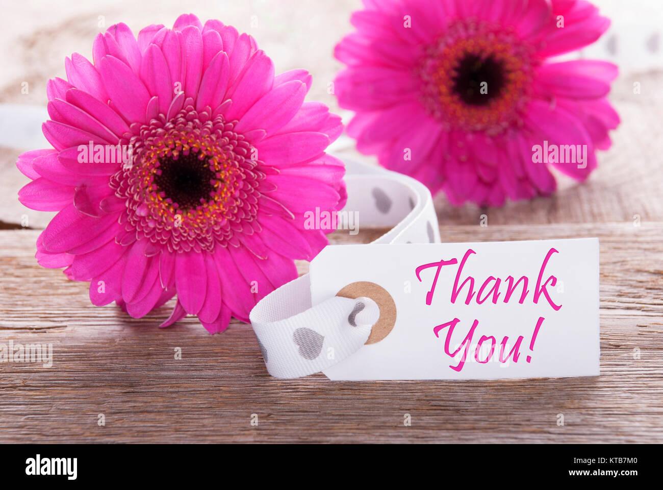 L Etiquette Avec Un Texte Anglais Merci Gerbera Rose Fleur De