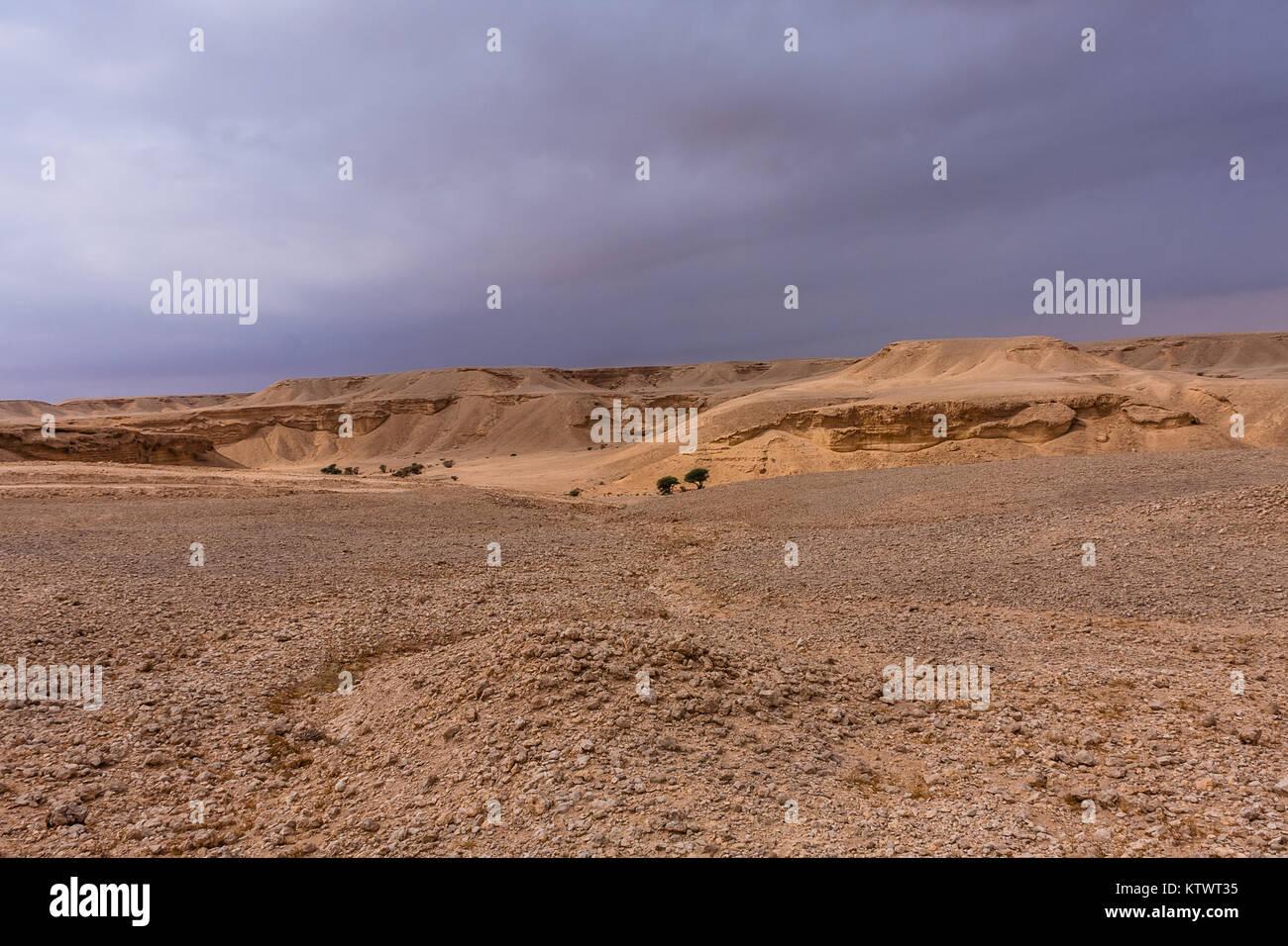 Un paysage désertique à l'est de Riyad Photo Stock
