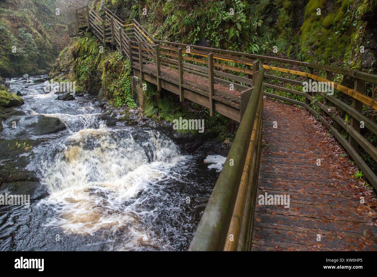 La chute d'boardwak à pied dans le parc forestier de Glenariff Banque D'Images