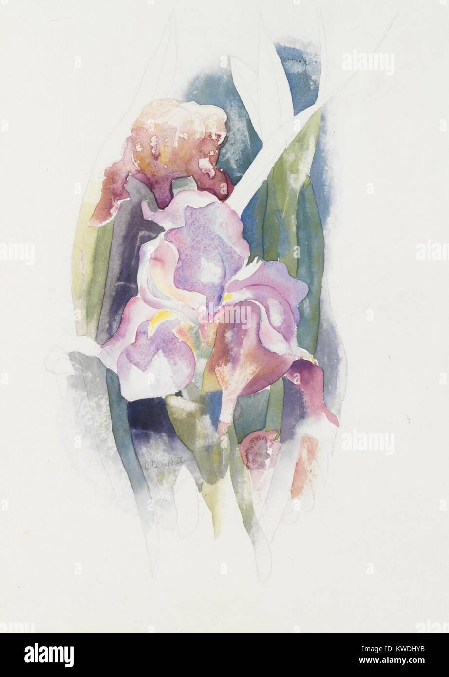 Iris Mauve Par Charles Demuth C 1920 Peinture Aquarelle