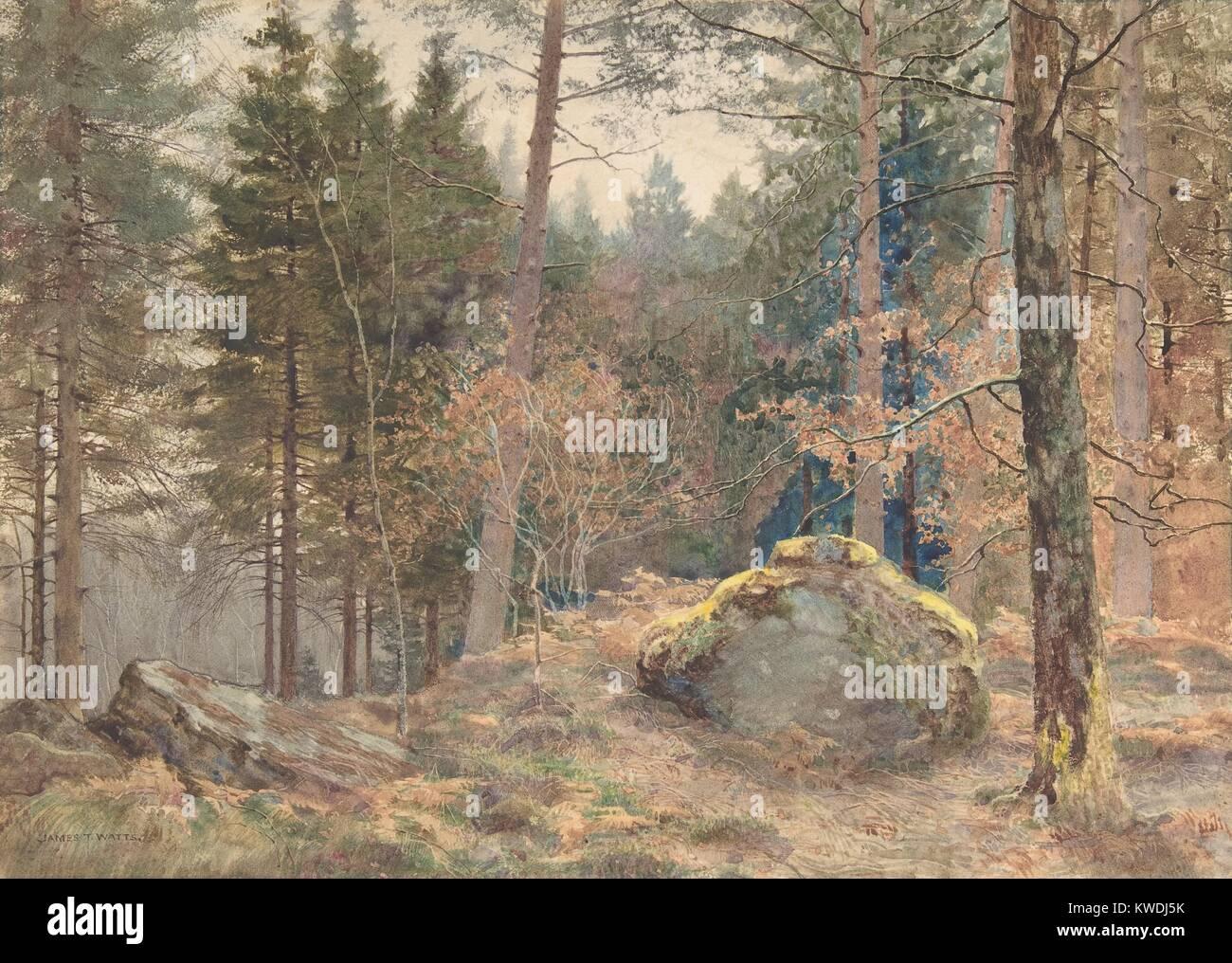 Dans un bois de pin, par James Thomas, 1891 Watts, en aquarelle. Watts a été influencé par Ruskin et les préraphaélites. Banque D'Images