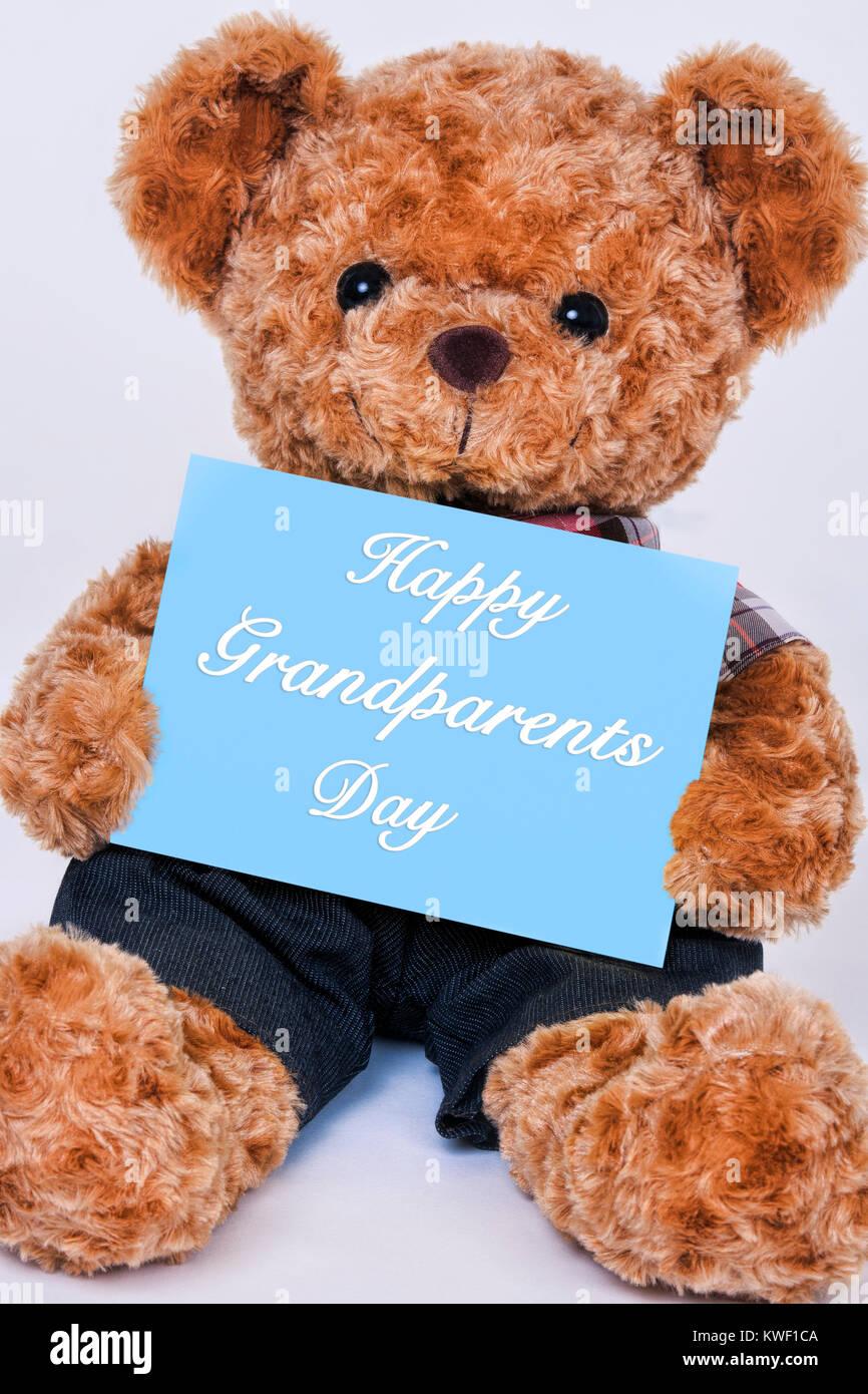 Mignon ours en peluche tenant un panneau bleu qui lit heureux grands-parents jour isolé sur fond blanc Photo Stock