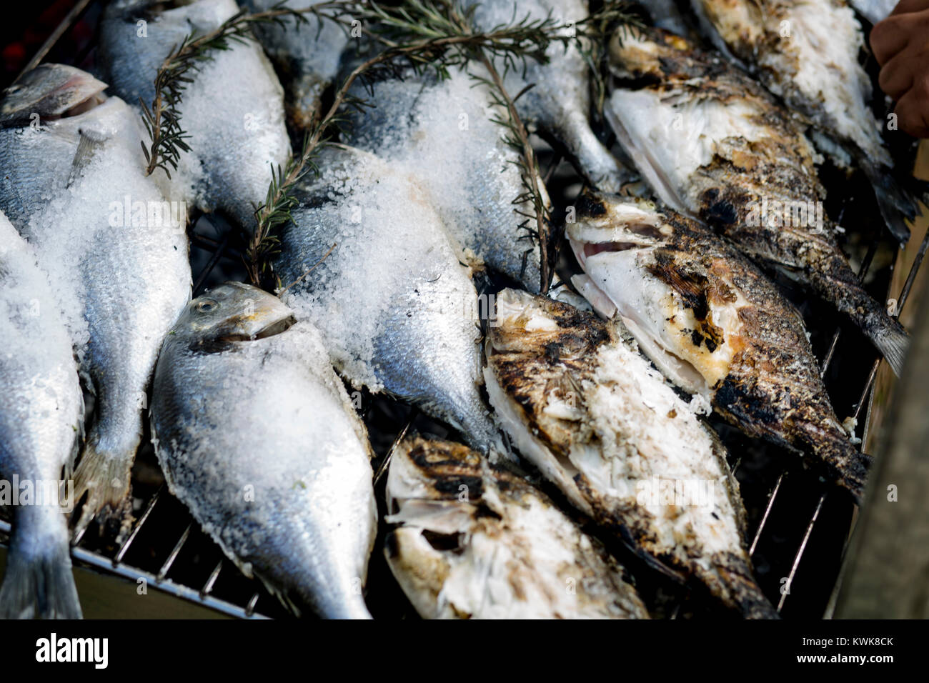 Faire de la gastronomie. Les poissons et les poissons, légumes ingrédients, grill, avocat. Photo Stock