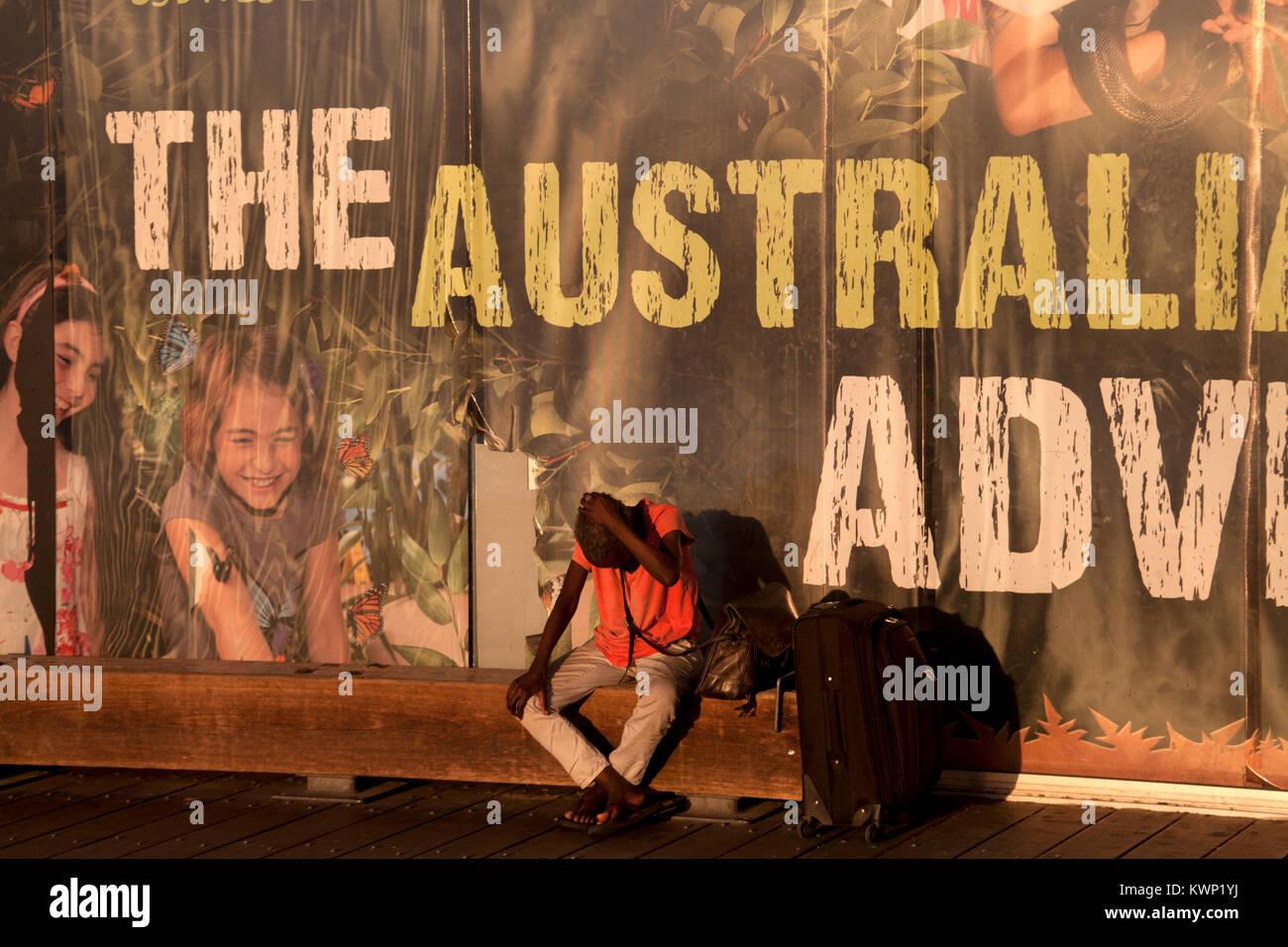 Panneaux publicitaires pour la faune Sydney Darling Harbour sydney New South Wales australie Photo Stock