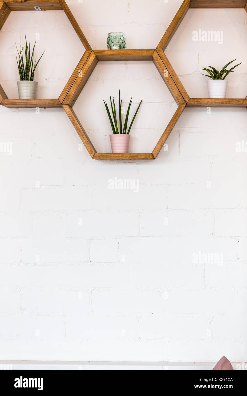 étagère Murale Et Laffichage Des Plantes Sur Mur En Brique Blanche