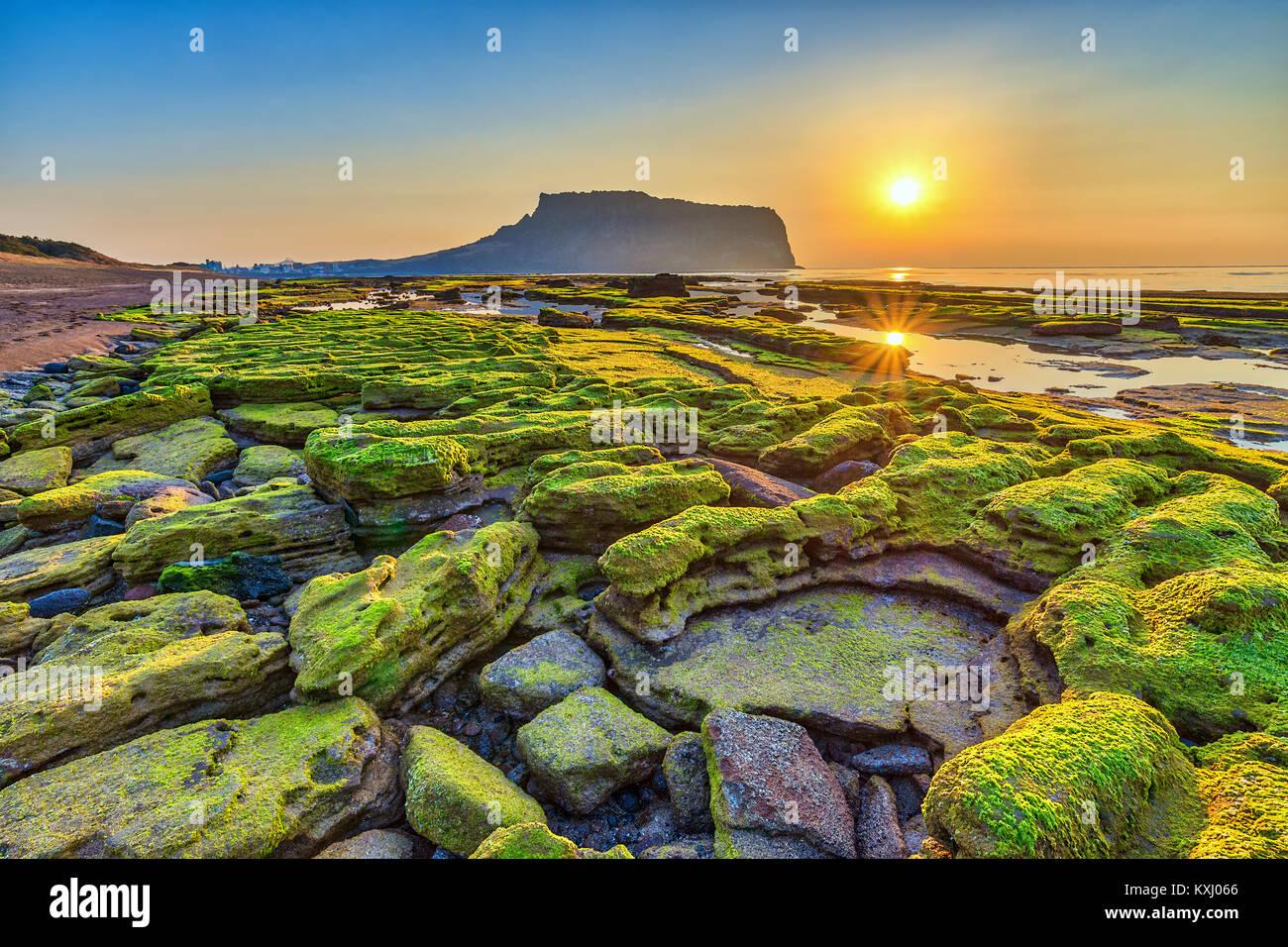 Lever du soleil à Jeju Do Seongsan Ilchulbong, l'île de Jeju, Corée du Sud Photo Stock