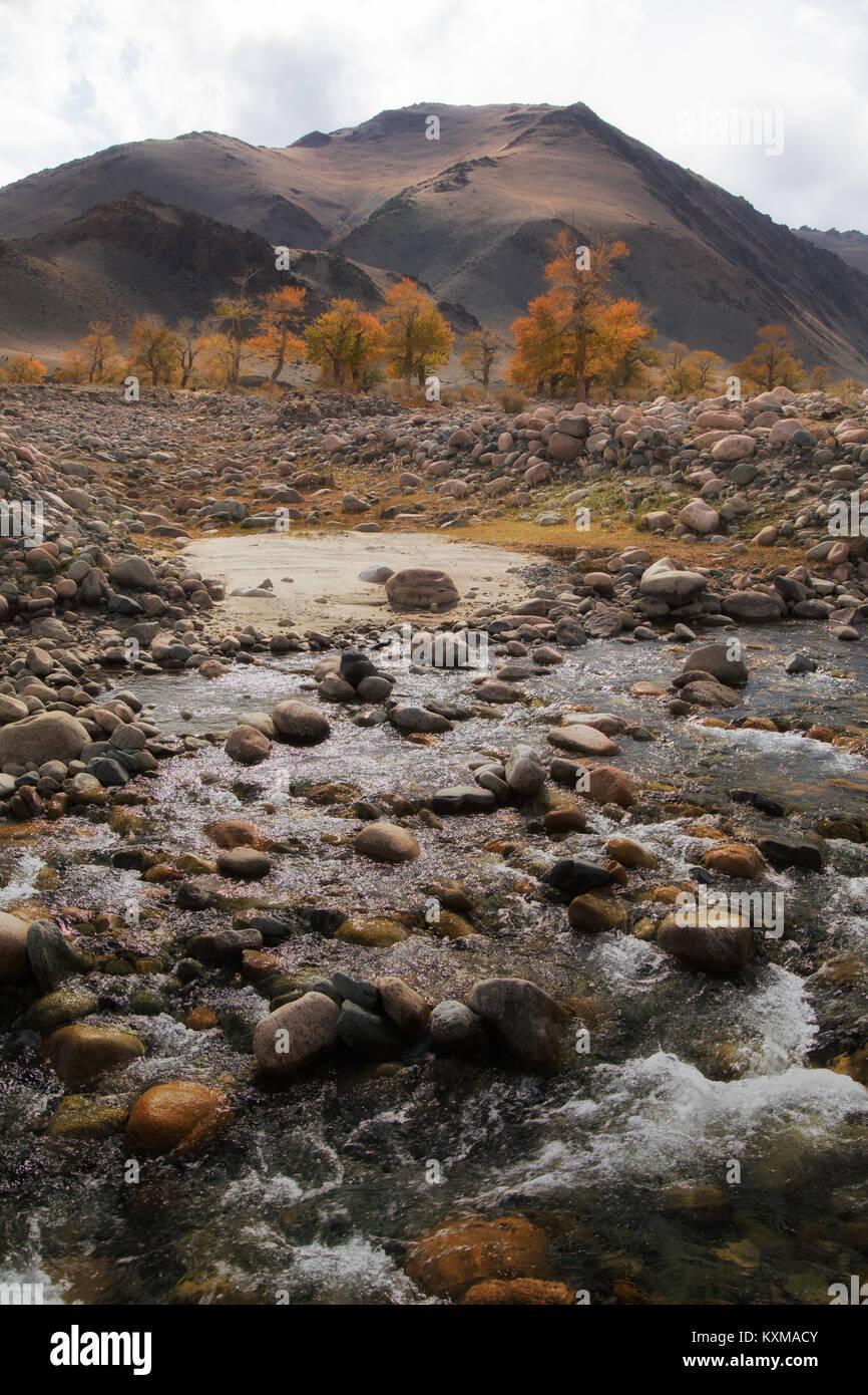 Feuilles d'automne jaune Mongolie River jet de l'eau paysage Photo Stock