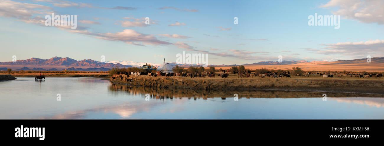 Cheval au coucher du soleil paysage rivière traversée des plaines de la Mongolie steppes troupeau de chèvres Photo Stock