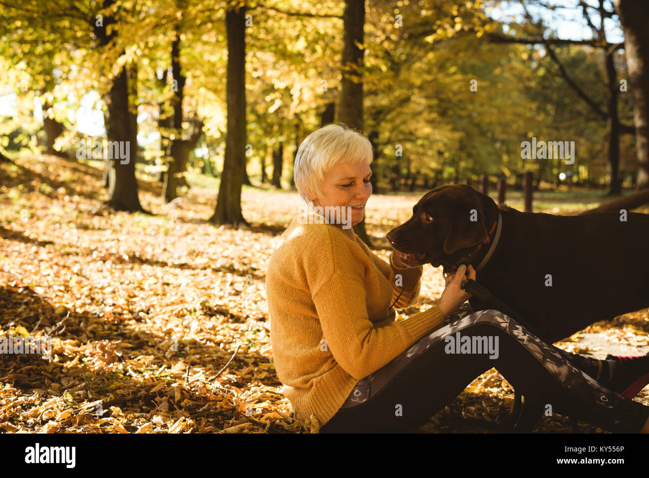 Senior woman sitting on ground et caressant son chien dans le parc Banque D'Images