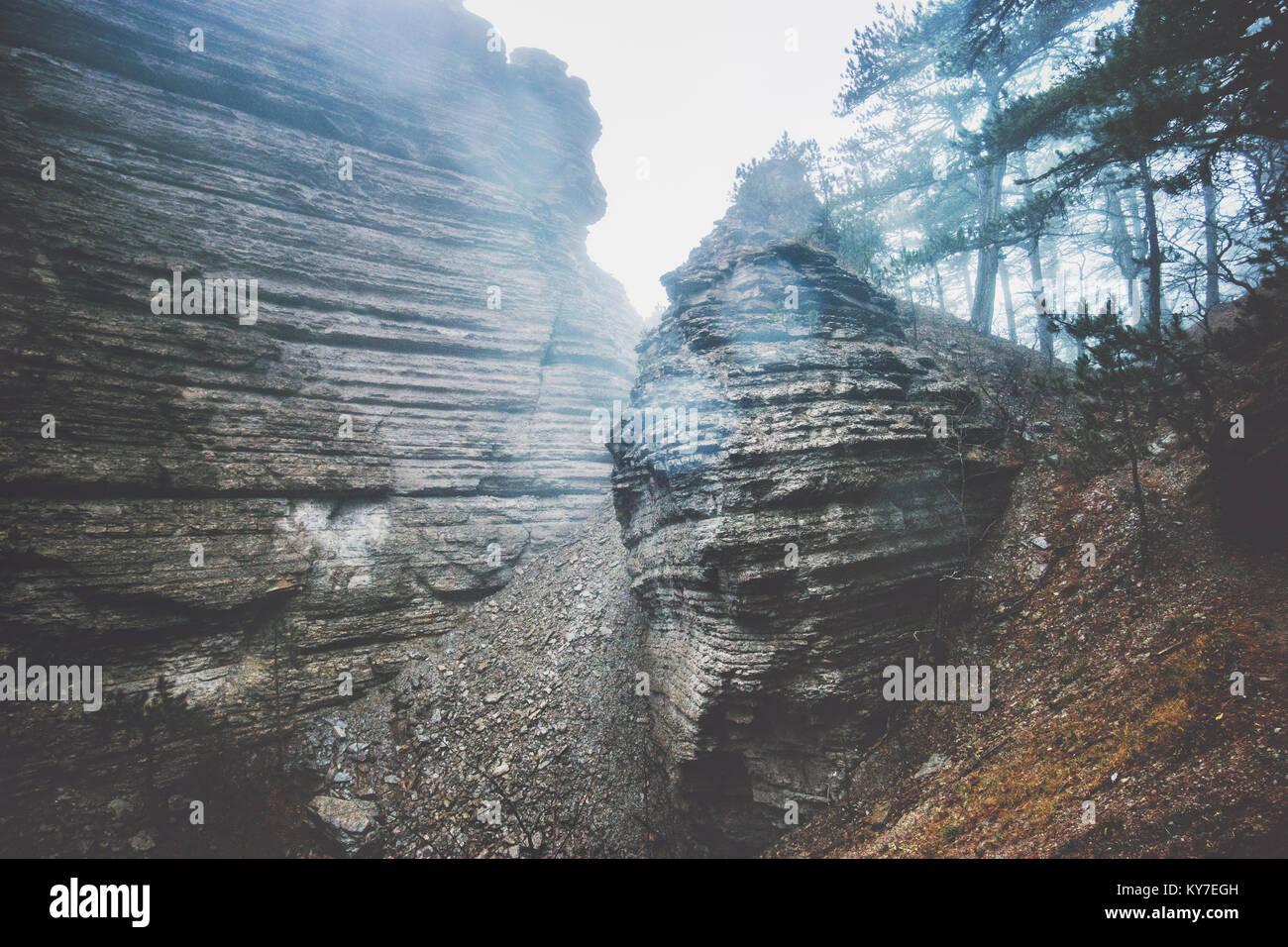 Montagnes Rocheuses et de forêts de brouillard vue panoramique du paysage paysage serein Voyage jour de pluie Photo Stock