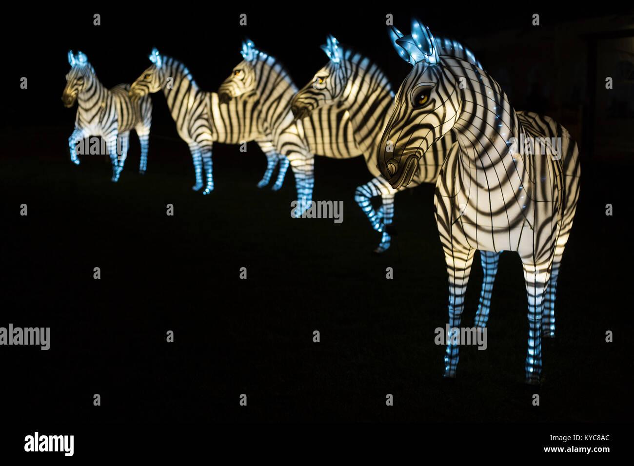 Zebra à l'Illuminasia lanternes Lantern Festival, réalisé à la main par des artisans chinois, Photo Stock