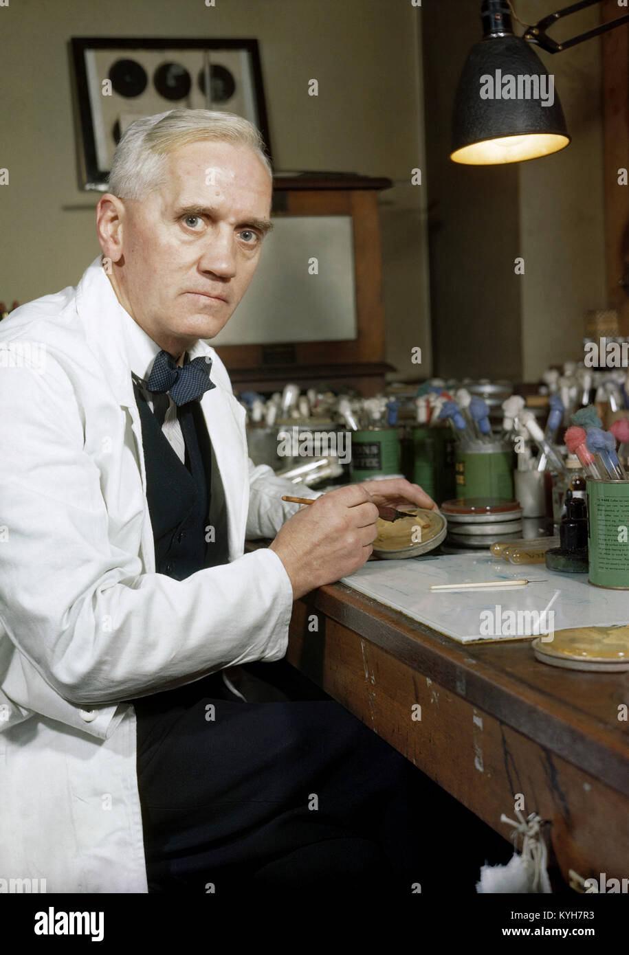 Alexander Fleming, la production synthétique de la pénicilline le Professeur Alexander Fleming, qui fut Photo Stock