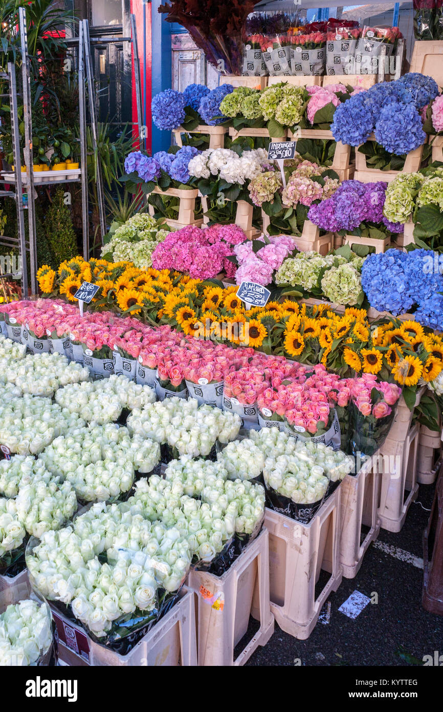 Columbia Road Flower Market stall sans personnes Photo Stock