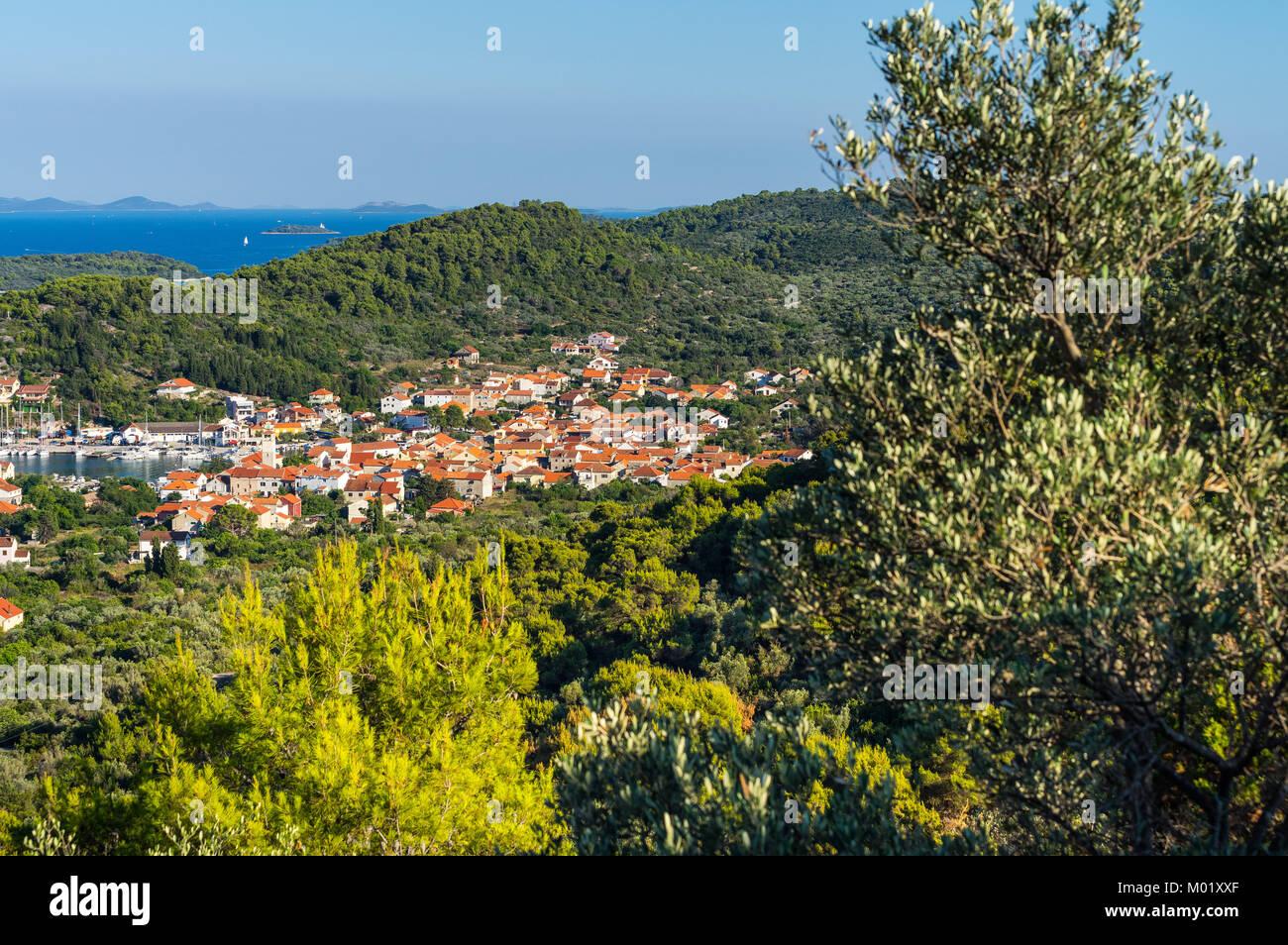 L'été sur Island Iz, Croatie Photo Stock