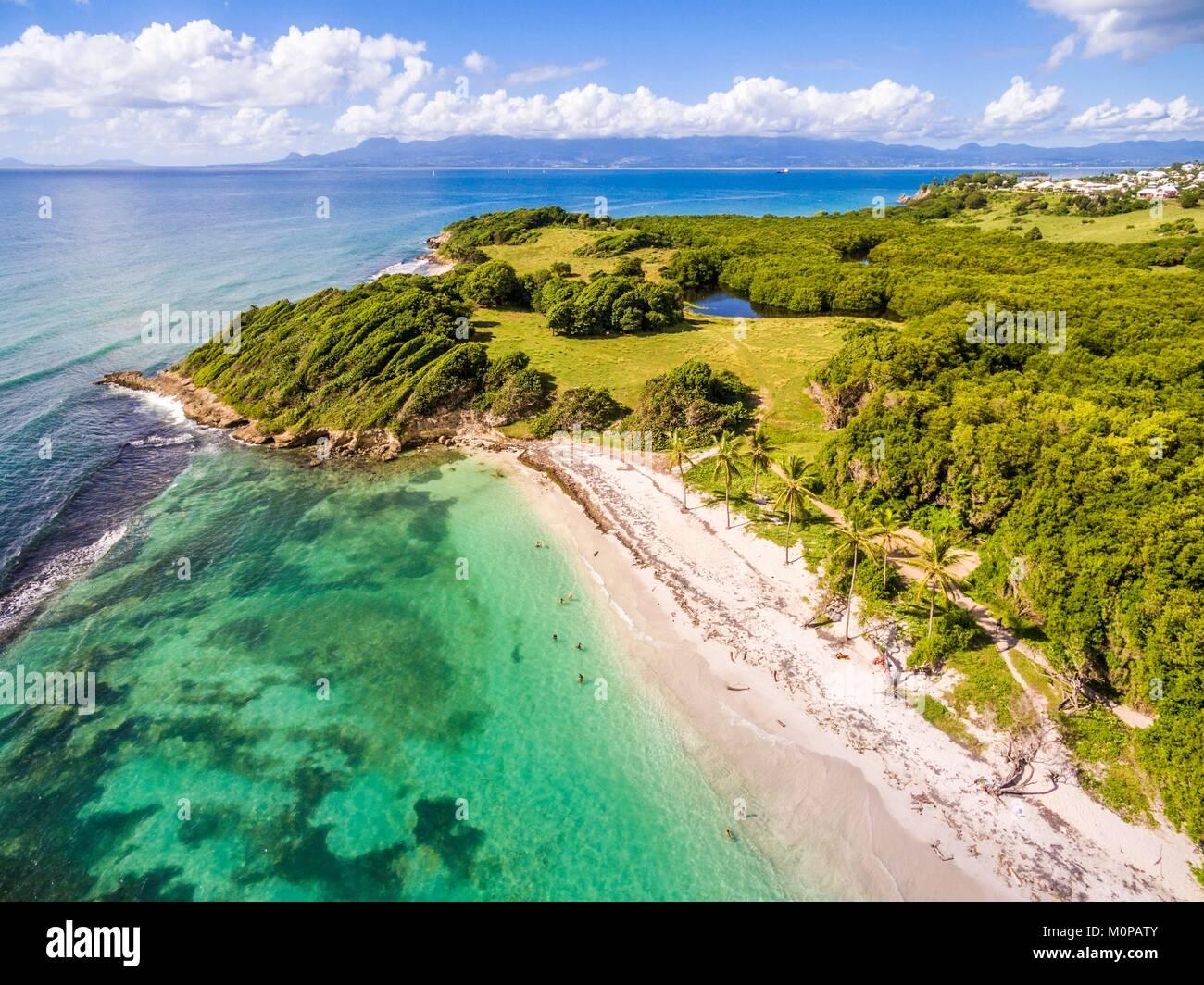 France,Caraïbes Petites Antilles, la Guadeloupe, Grande-Terre,,Le Gosier,vue aérienne sur la plage de Saint Félix, mangrove dans l'arrière-plan (vue aérienne) Banque D'Images