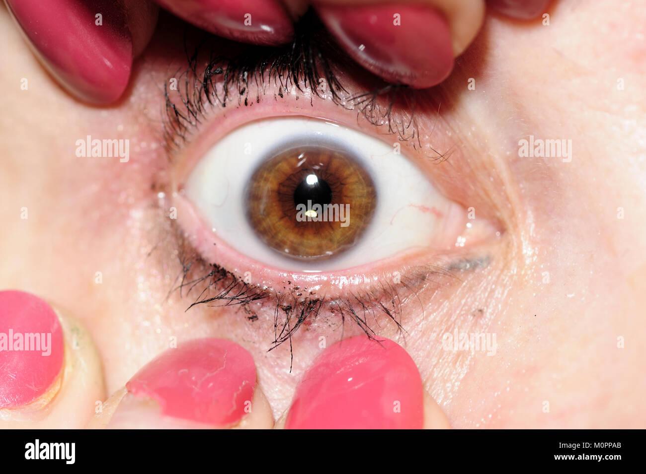 Eye, eyeball, testés, les droits, les gens, les femmes, la santé, l'orgue, sens, Photo Stock